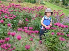 Naturerlebnis-Kid-Zone-Kinderbetreuung-1a