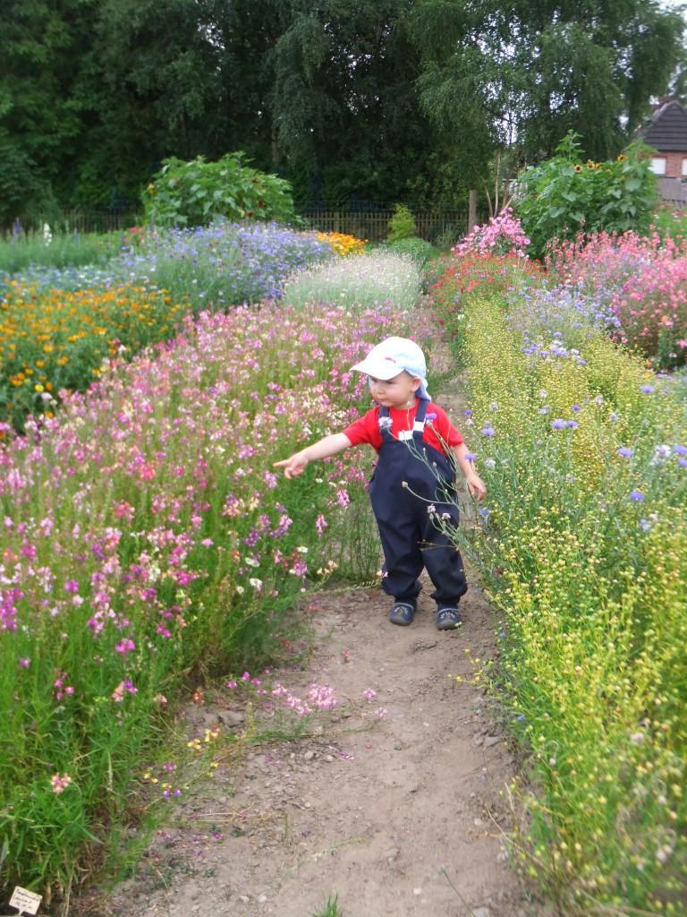 Naturerlebnis-Kid-Zone-Kinderbetreuung-1