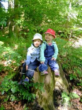 Naturerlebnis-Kid-Zone-Kinderbetreuung-4a